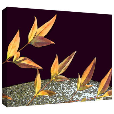 Brushstone Natural World (Fall) Gallery Wrapped Canvas Wall Art