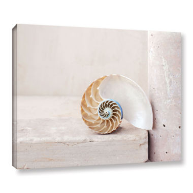 Brushstone Nautilus Gallery Wrapped Canvas Wall Art
