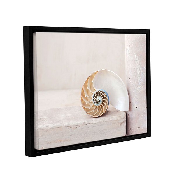Brushstone Nautilus Gallery Wrapped Floater-FramedCanvas Wall Art