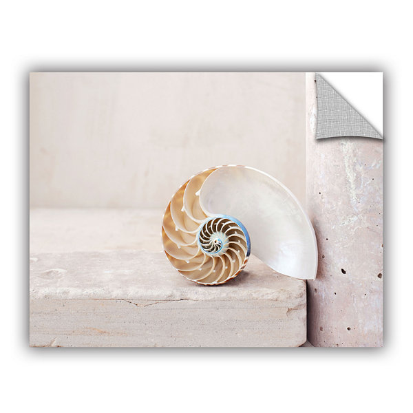 Brushstone Nautilus Removable Wall Decal