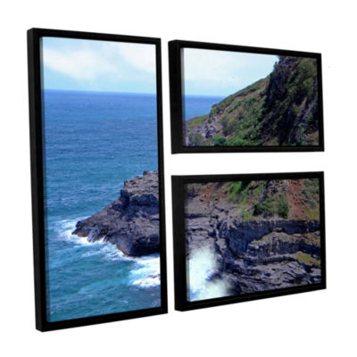 Brushstone Sea Cave And Nesting Boobies 3-pc. FlagFloater Framed Canvas Wall Art