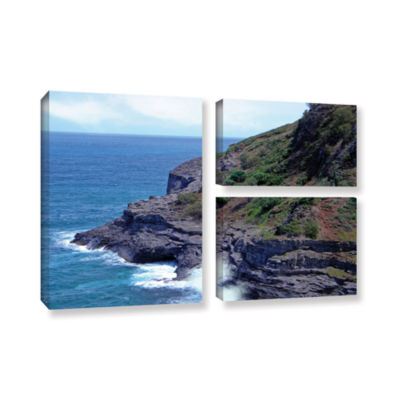 Brushstone Sea Cave And Nesting Boobies 3-pc. FlagGallery Wrapped Canvas Wall Art