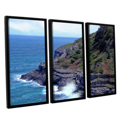 Brushstone Sea Cave And Nesting Boobies 3-pc. Floater Framed Canvas Wall Art
