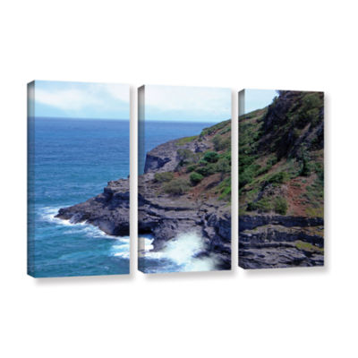Brushstone Sea Cave And Nesting Boobies 3-pc. Gallery Wrapped Canvas Wall Art