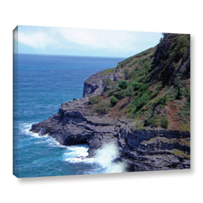 Brushstone Sea Cave And Nesting Boobies Gallery Wrapped Canvas Wall Art