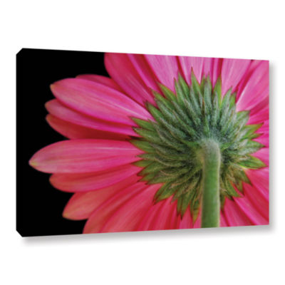 Brushstone Shy Flowers Gallery Wrapped Canvas WallArt