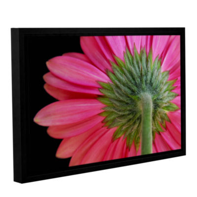 Brushstone Shy Flowers Gallery Wrapped Floater-Framed Canvas Wall Art