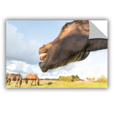 Brushstone Side Mouth Horse Removable Wall Decal