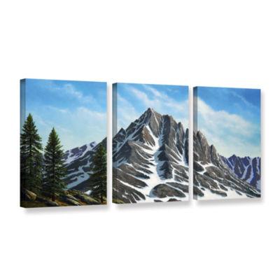 Brushstone Sierra Peak 3-pc. Gallery Wrapped Canvas Wall Art