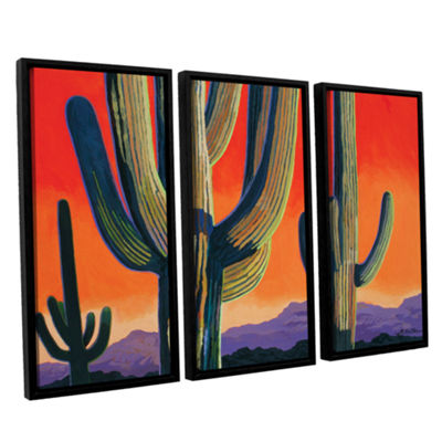 Brushstone Saguaro Dawn 3-pc. Floater Framed Canvas Wall Art
