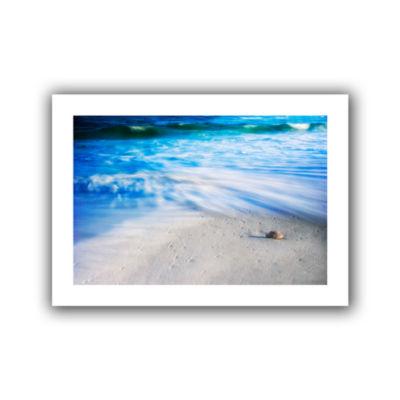 Brushstone Seashells On The Seashore Canvas Wall Art