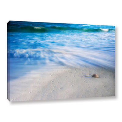 Brushstone Seashells On The Seashore Gallery Wrapped Canvas Wall Art