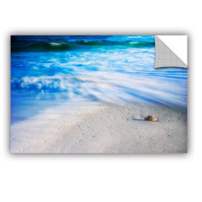 Brushstone Seashells On The Seashore Removable Wall Decal