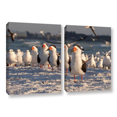 Brushstone Skimmers Siesta Key 2-pc. Gallery Wrapped Canvas Wall Art