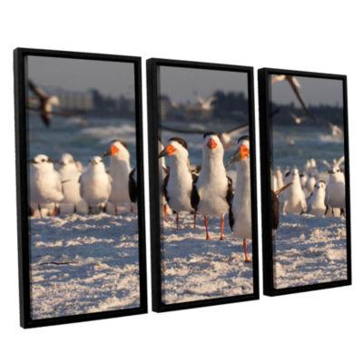 Brushstone Skimmers Siesta Key 3-pc. Floater Framed Canvas Wall Art