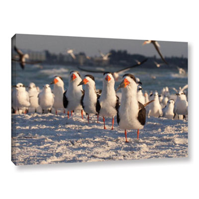 Brushstone Skimmers Siesta Key Gallery Wrapped Canvas Wall Art