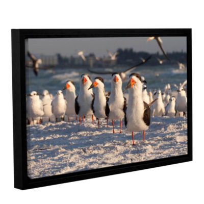 Brushstone Skimmers Siesta Key Gallery Wrapped Floater-Framed Canvas Wall Art