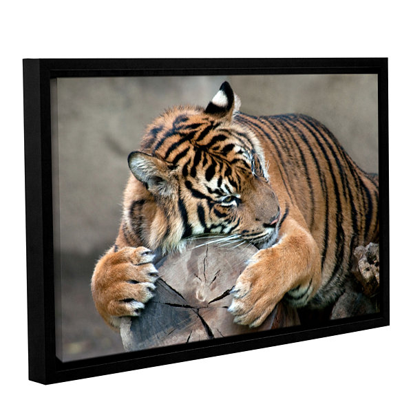 Brushstone Sleepy Gallery Wrapped Floater-Framed Canvas Wall Art