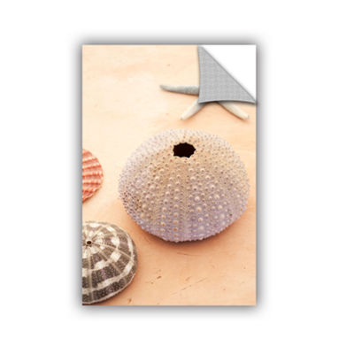 Brushstone Seashells Removable Wall Decal