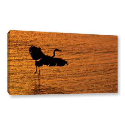 Brushstone Smooth Landing In Morning Glow GalleryWrapped Canvas Wall Art