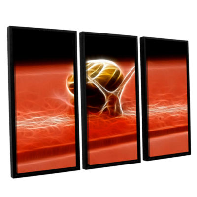 Brushstone Snail 3-pc. Floater Framed Canvas WallArt
