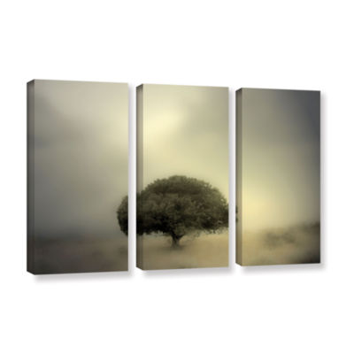 Brushstone Room To Grow 3-pc. Gallery Wrapped Canvas Wall Art