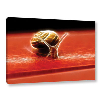 Brushstone Snail Gallery Wrapped Canvas Wall Art
