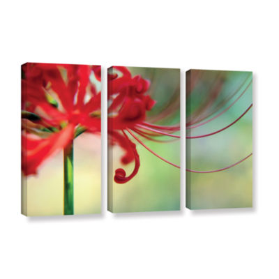 Brushstone Soft Spring 3-pc. Gallery Wrapped Canvas Wall Art