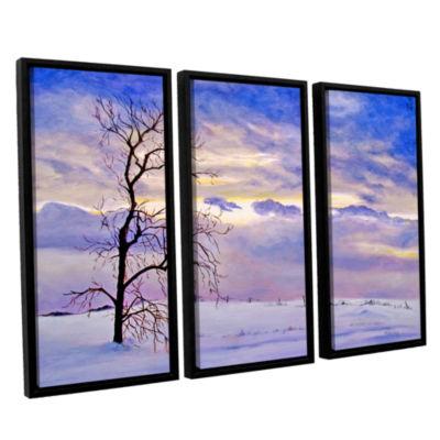 Brushstone Solitude (Snowy Landscape) 3-pc. Floater Framed Canvas Wall Art