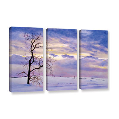 Brushstone Solitude (Snowy Landscape) 3-pc. Gallery Wrapped Canvas Wall Art