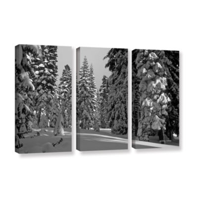 Brushstone Solitude 3-pc. Gallery Wrapped Canvas Wall Art