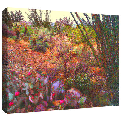 Brushstone Sonoran Spring Gallery Wrapped Canvas Wall Art