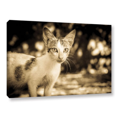 Brushstone Soul Searching Kitty Gallery Wrapped Canvas Wall Art