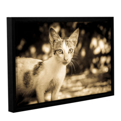 Brushstone Soul Searching Kitty Gallery Wrapped Floater-Framed Canvas Wall Art