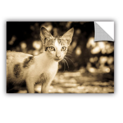 Brushstone Soul Searching Kitty Removable Wall Decal