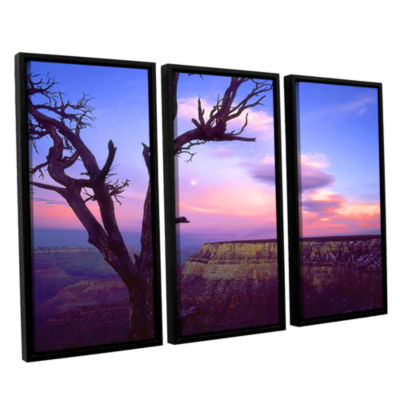Brushstone South Rim Moon 3-pc. Floater Framed Canvas Wall Art