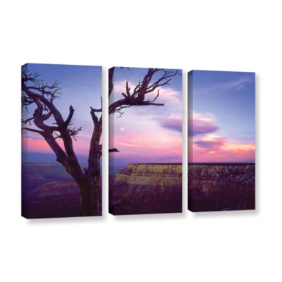 Brushstone South Rim Moon 3-pc. Gallery Wrapped Canvas Wall Art