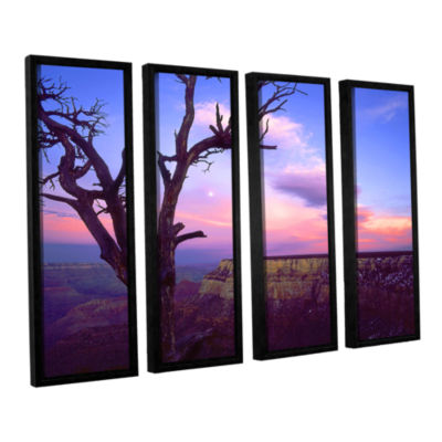 Brushstone South Rim Moon 4-pc. Floater Framed Canvas Wall Art