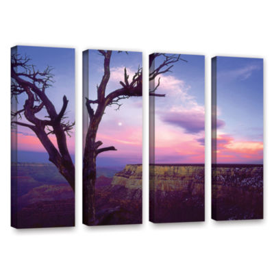 Brushstone South Rim Moon 4-pc. Gallery Wrapped Canvas Wall Art