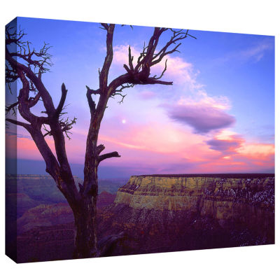 Brushstone South Rim Moon Gallery Wrapped Canvas Wall Art