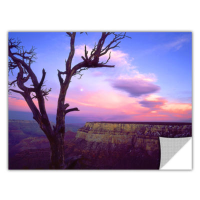 Brushstone South Rim Moon Removable Wall Decal