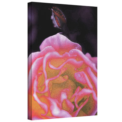 Brushstone Rose Bud Gallery Wrapped Canvas Wall Art
