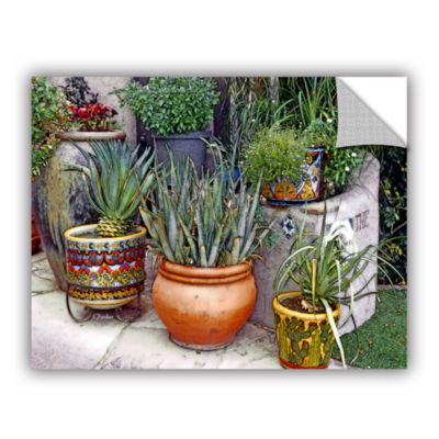Brushstone Southwest Potted Garden Removable WallDecal