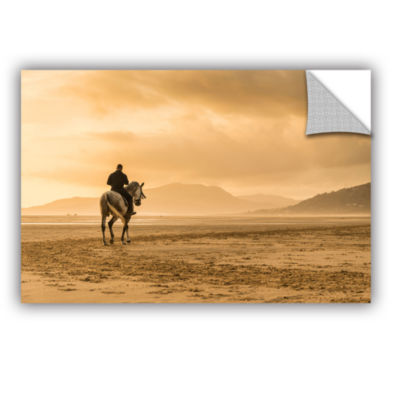 Brushstone Spanish Horse Removable Wall Decal