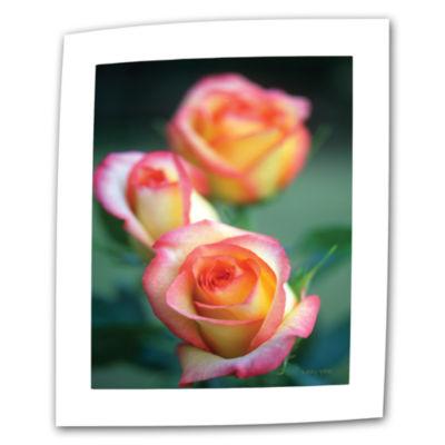 Brushstone Rose Trio Canvas Wall Art