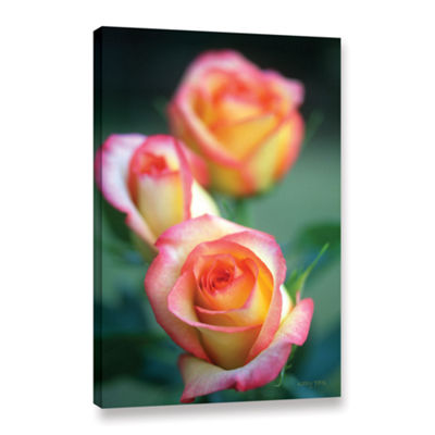 Brushstone Rose Trio Gallery Wrapped Canvas Wall Art
