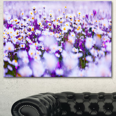 Designart Daisy Field Photography Panorama FloralCanvas Art Print - 3 Panels
