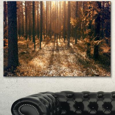 Designart Dark First Snow Forest Photo Modern Forest Canvas Art