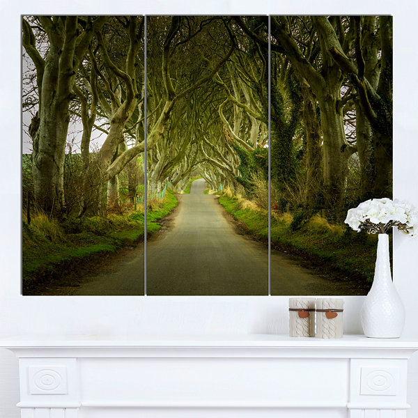 Designart Dark Hedges Road Through Old Trees Landscape Canvas Art Print - 3 Panels