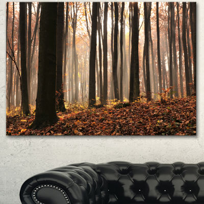 Designart Dark Thick Woods In Fall Forest ModernForest Canvas Art - 3 Panels